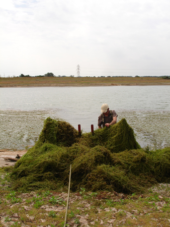 Our unique Lake-rake drags the bed, removing weed at the root to minimise future re-growth.