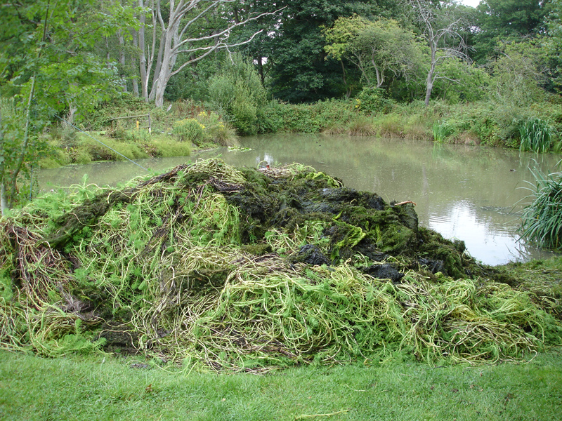 Mechanical Weed Removal Case Studies Pond And Lake