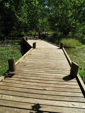 Boardwalks Pond Bridges Vehicle Tracks Footpaths