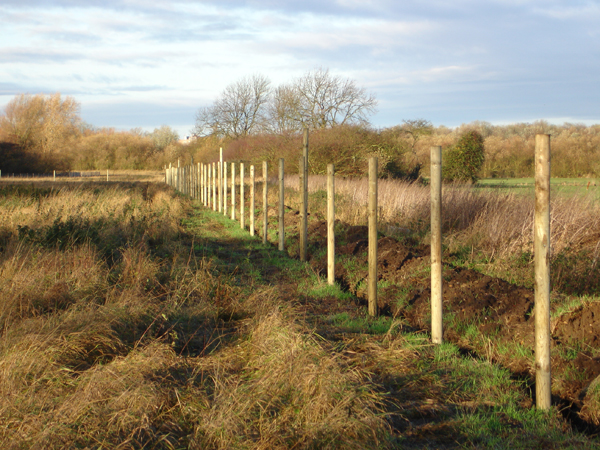 We can advise on the optimum fence-line for otter fencing.