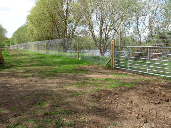 Otter Proof Fencing Pond Weed And Lake Maintenance