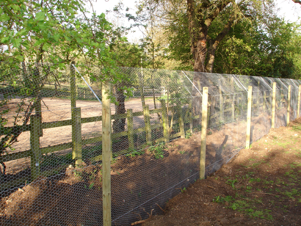 We employ optimised fencing to ensure the protection of valuable species.