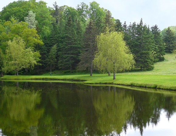 Lake management pond restoration services conservation for Private fishing lakes