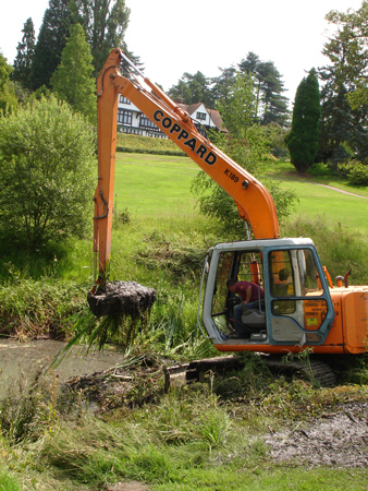 Reed Removal Amp Cutting Pond And Lake Weed Control